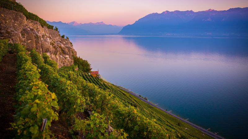 Lavaux - © www.bailly-photo.ch