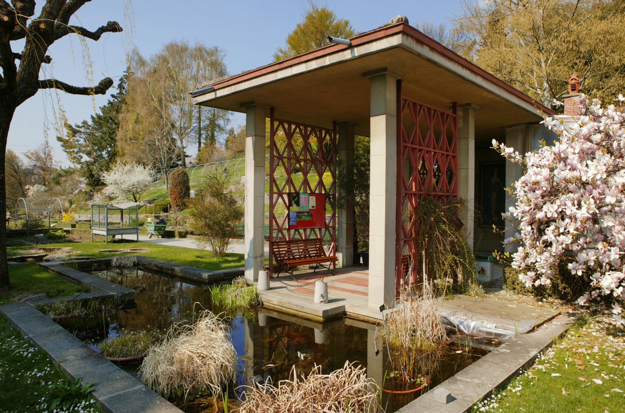 Lausanne botanical museum and garden