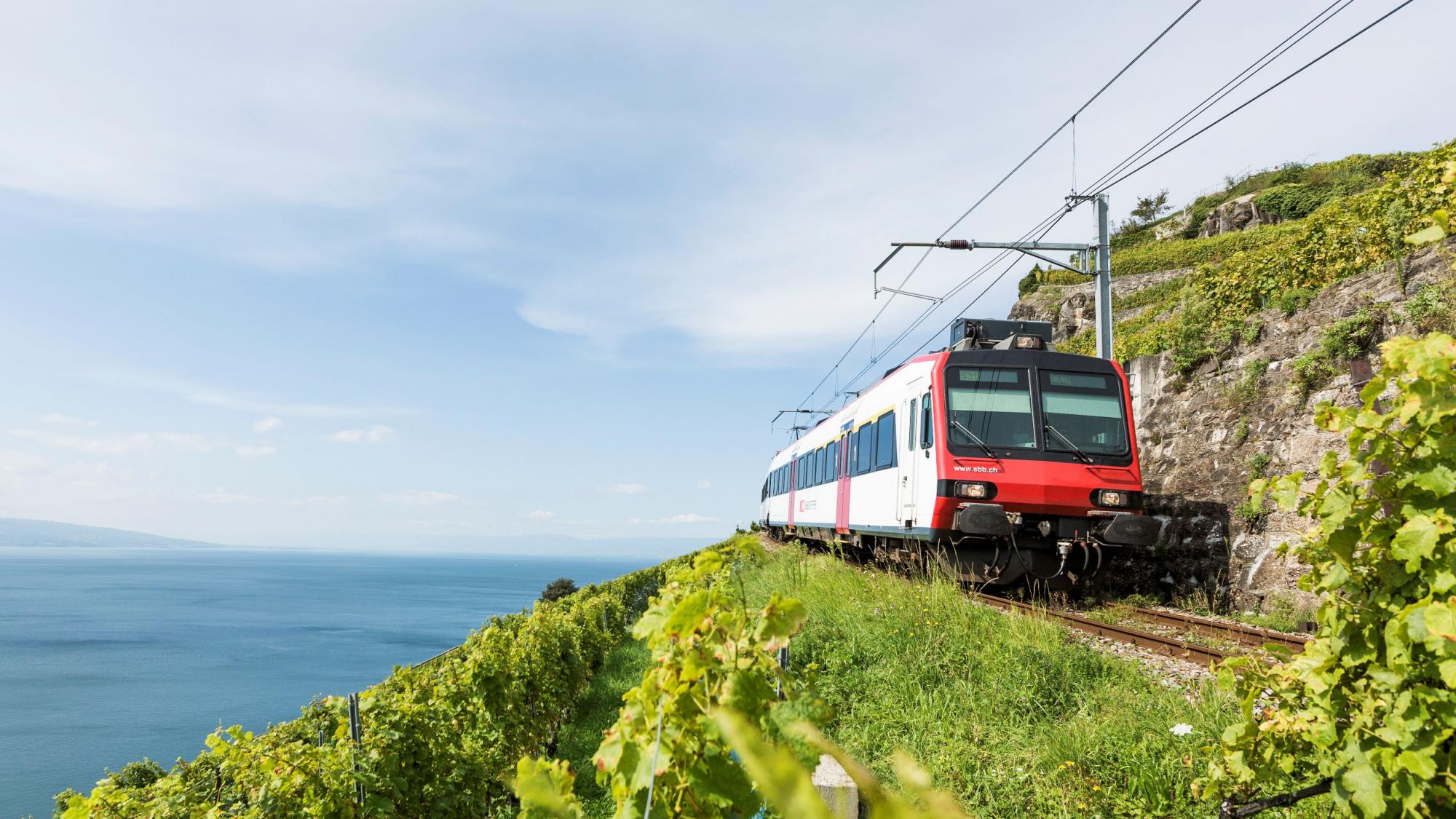 Train vignoble - © Guy Perrenoud