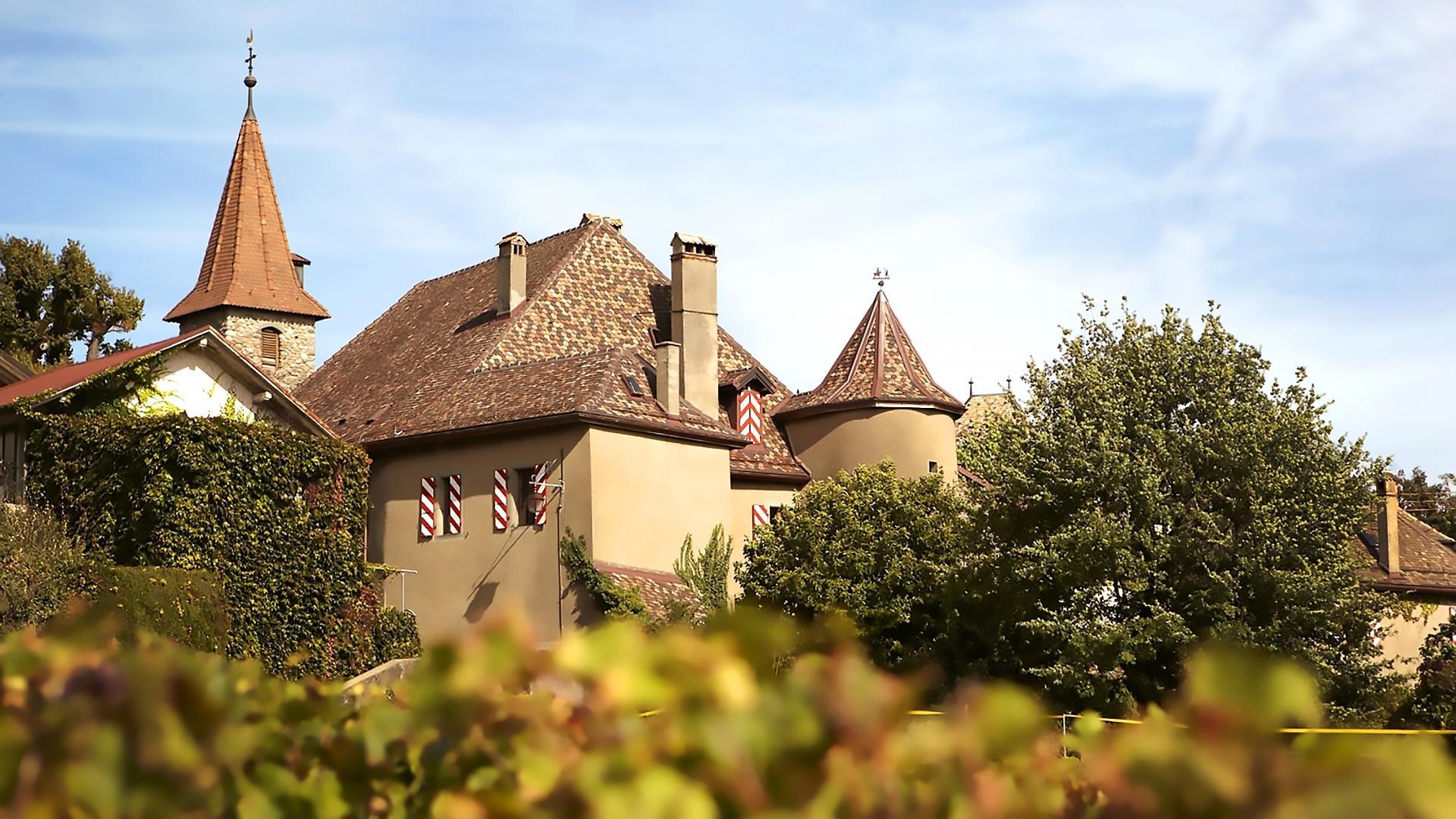 Sex guide in Rochefort