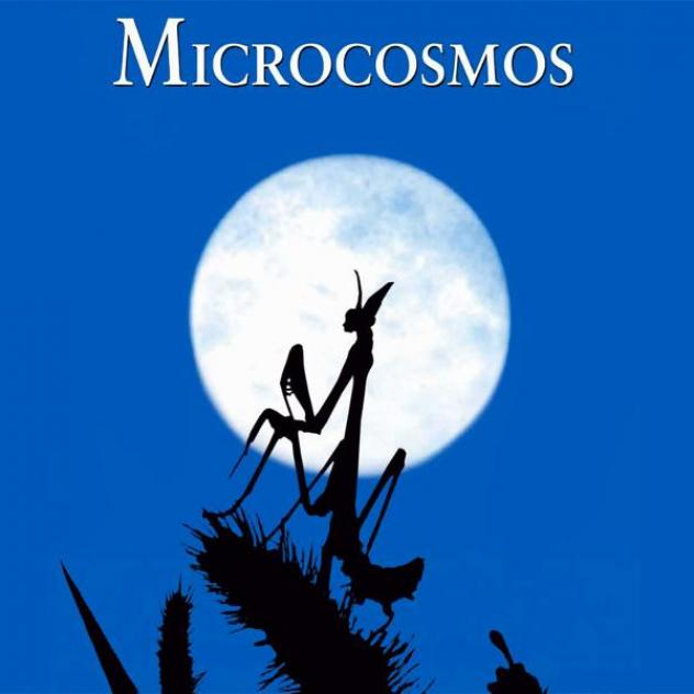 Microcosmos - Open-Air-Kino - ©