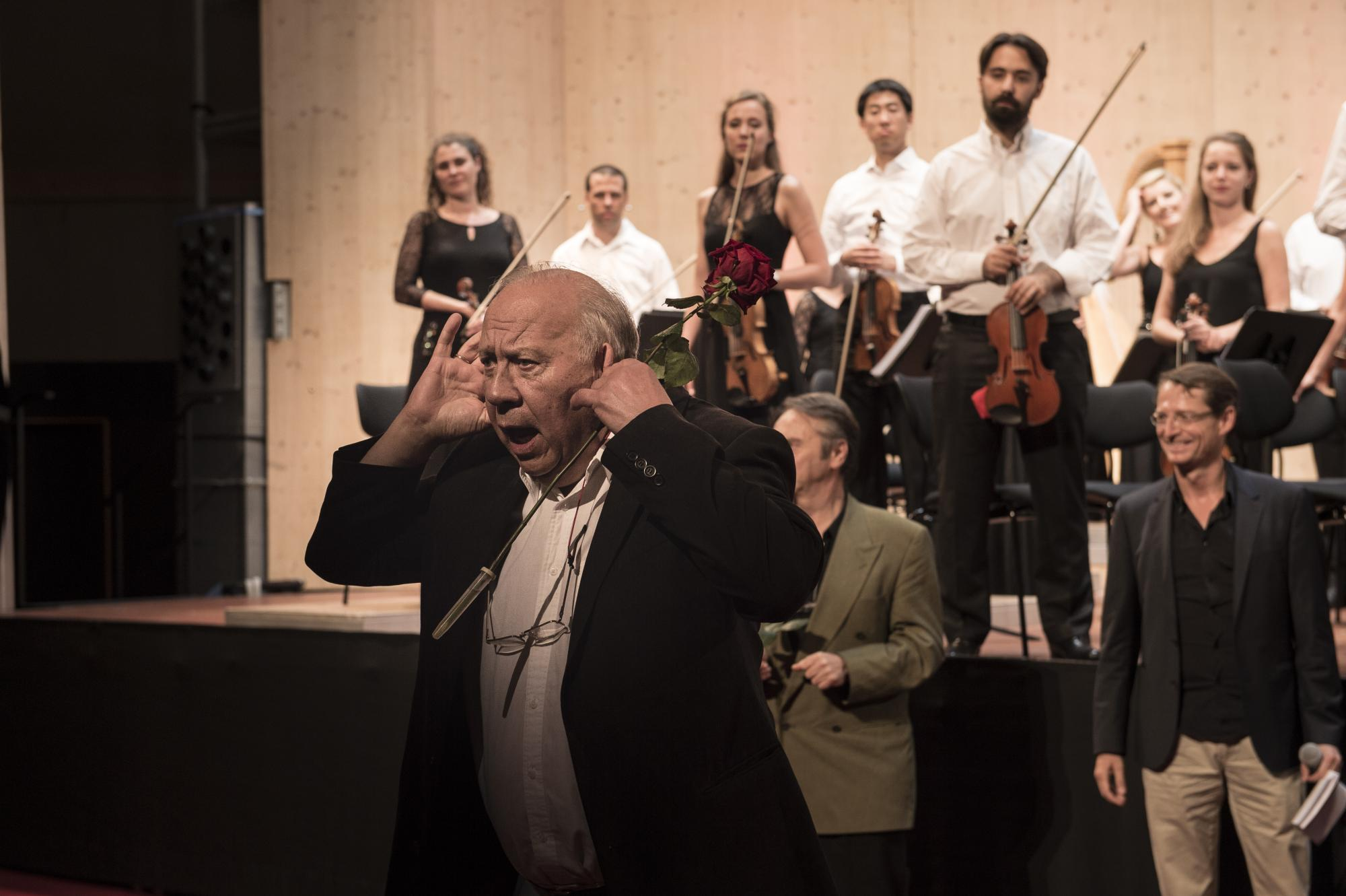 Menuhin conducting academy villars gryon les for Anne laure maison