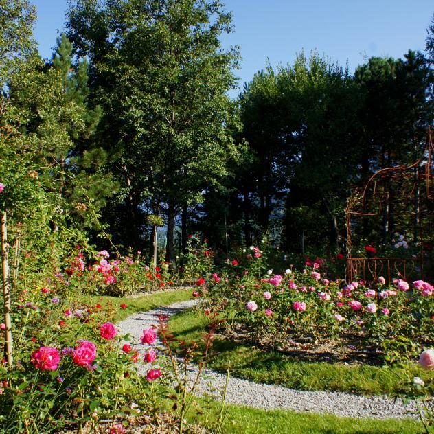 la thomasia jardin botanique de montagne villars gryon On jardin du pic vert