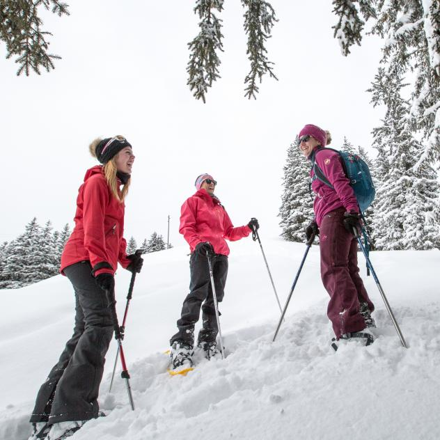 Guided snowshoeing walks
