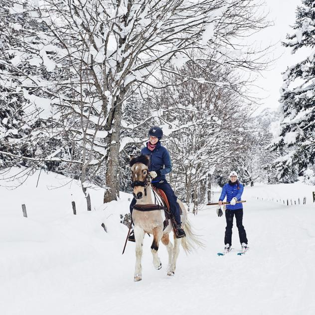 Balade à dos de Poney et initiation au Ski Jöring
