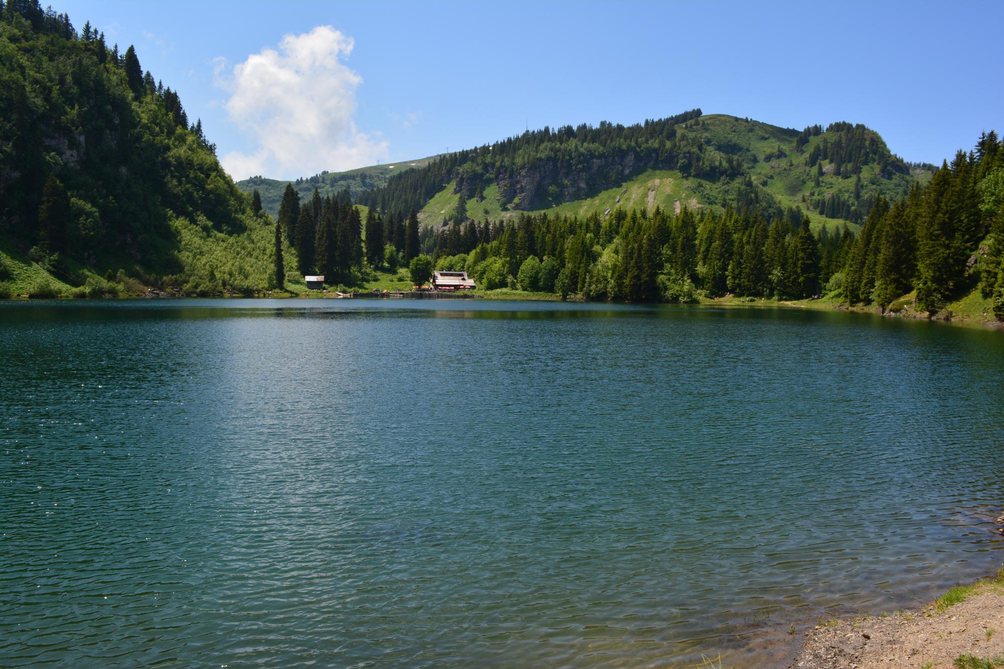 Piscine et lacs villars gryon les diablerets bex for Piscine du lac a tours