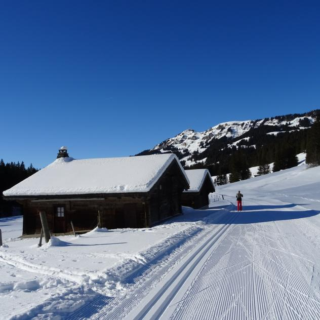 Cross country skiing : Circuit de Coufin