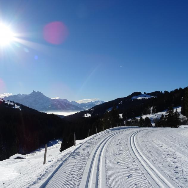 Cross-country skiing - Villars-Gryon