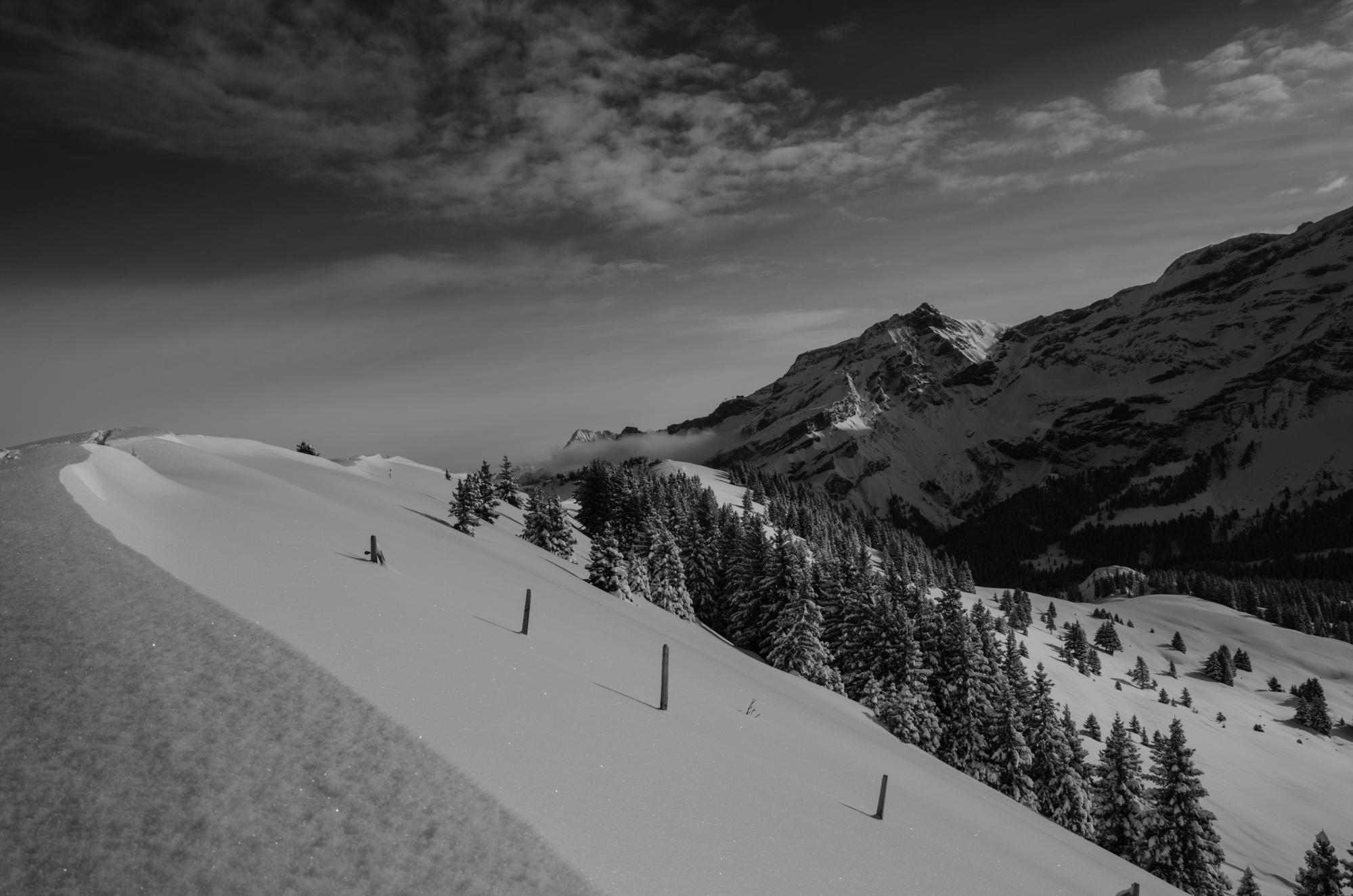 Touring track powered by movement black meilleret villars gryon les diablerets bex - Office tourisme diablerets ...