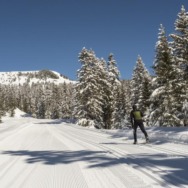 Cross-country skiing in the Villars-Gryon-les Diablerets-Bex region