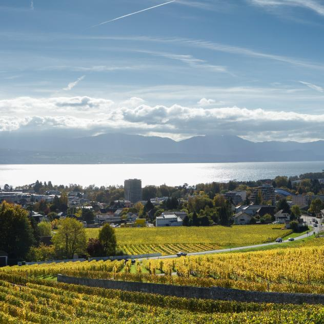 Superb view of the lake and Morges