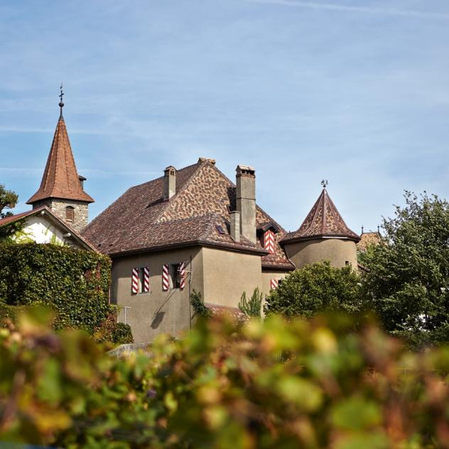 Rochefort Castle Bed & Breakfast