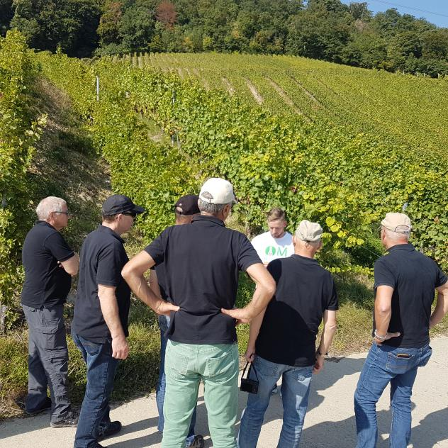Wine tour - MesVignerons