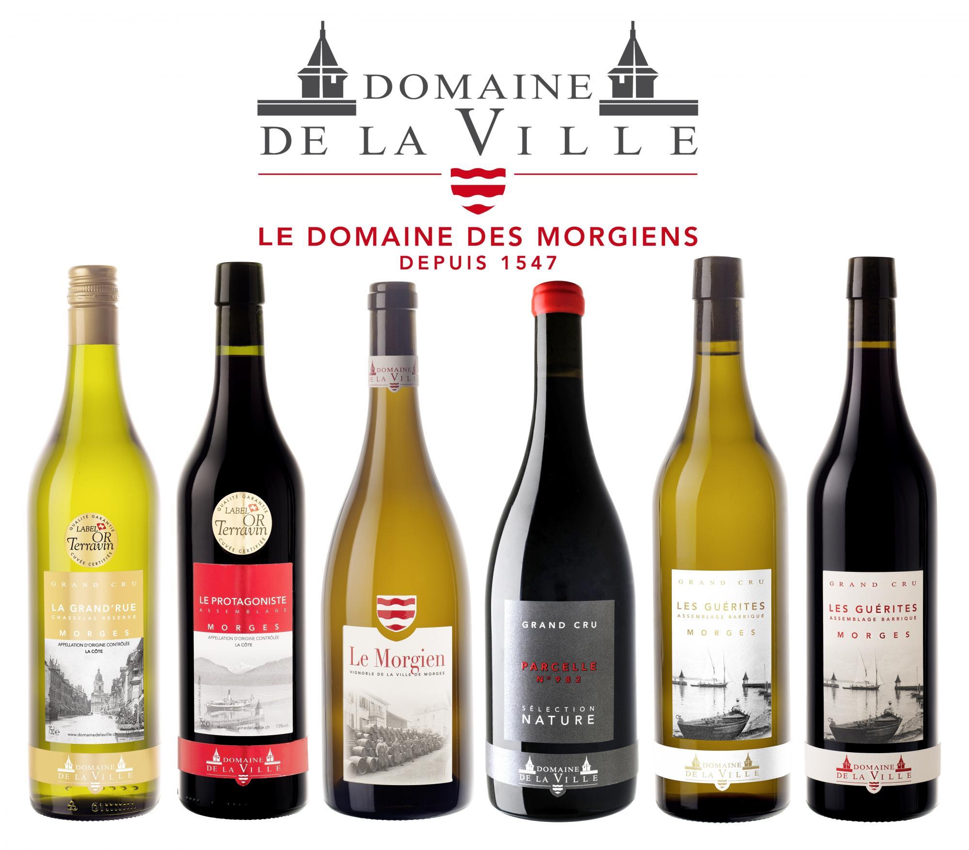 new product c2915 a4850 Domaine de la Ville de Morges DVM