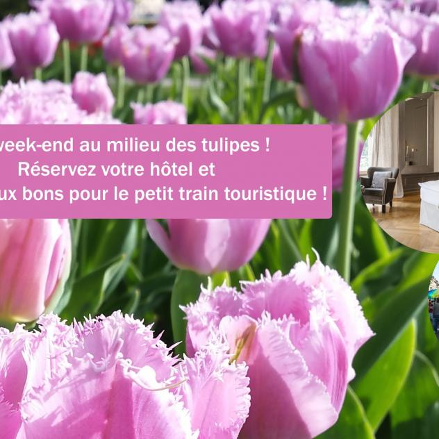 Week-end au milieu des tulipes