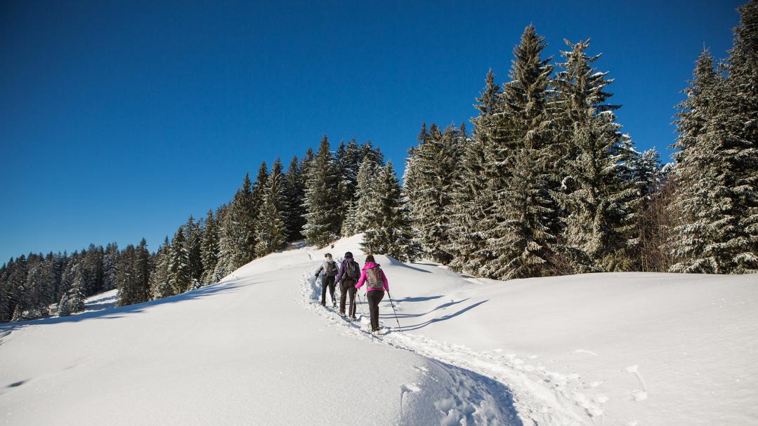 Snowshoeing and hiking