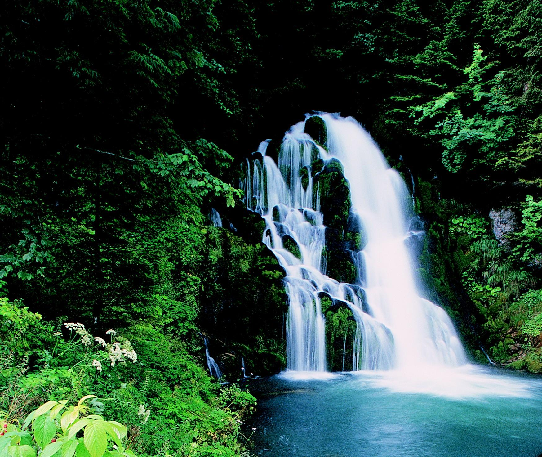 ABOUT OUR WATERFALL RENTALS