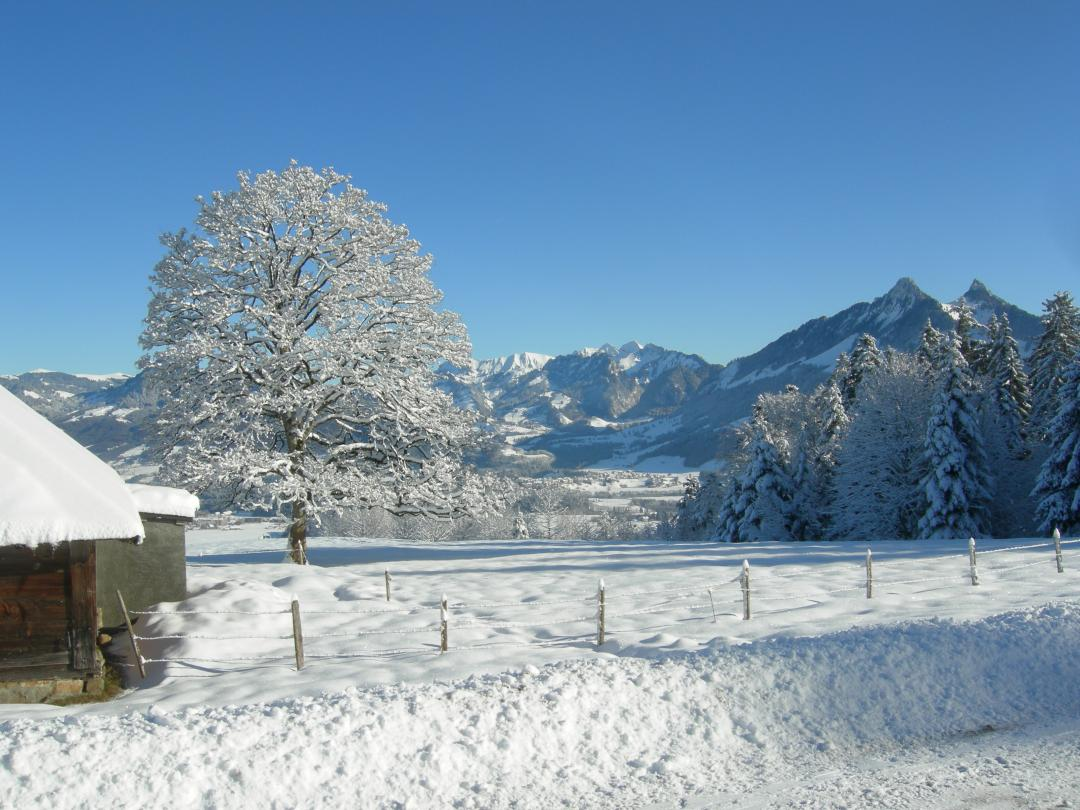 Winter in Bulle-La Chia