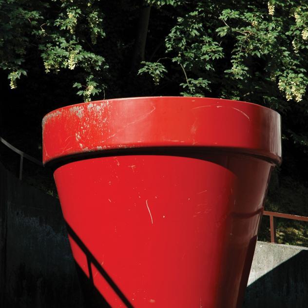 Le cardinal fribourg for Le jardin morat