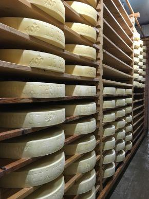 Laiteries & fromageries