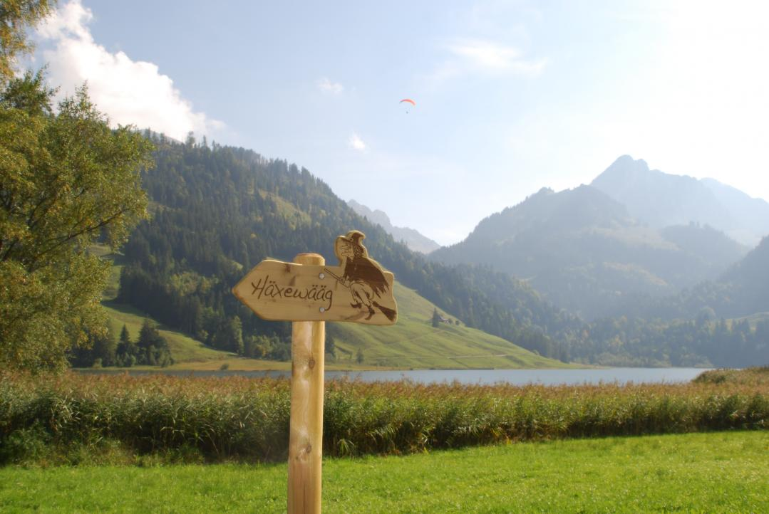 Witch path Schwarzsee