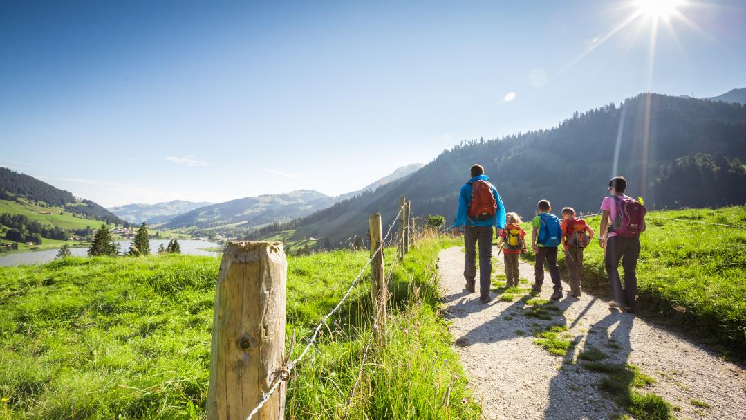 Family hiking tours
