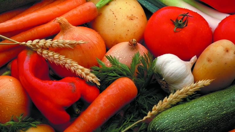 Vegetables from the Seeland